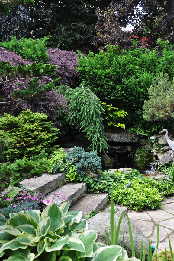 Three Dogs in a Garden: A Secret Pond & Waterfall