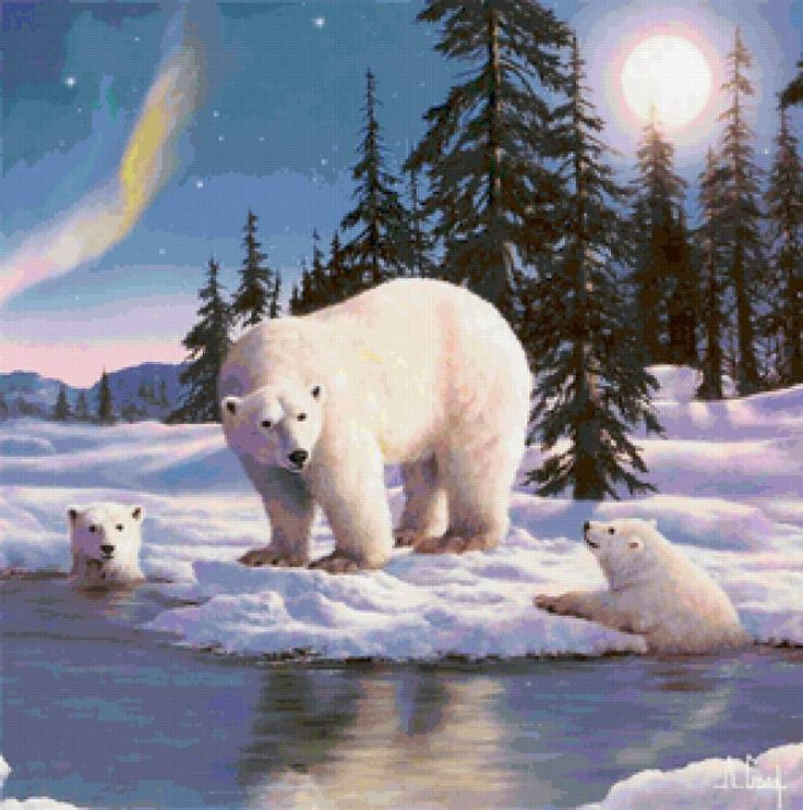 белые медведи - Схемы вышивки - poceluevavalenti - Авторы - Портал «Вышивка крестом»