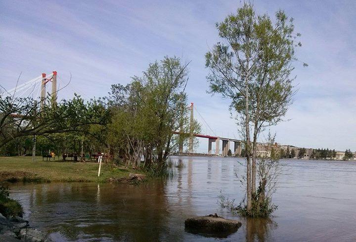 Martín Galván: Vista del puente Zarate brazo largo desde la isla