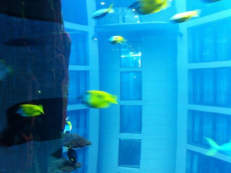 Aquadom & SEA LIFE Berlin in Berlin, Berlin