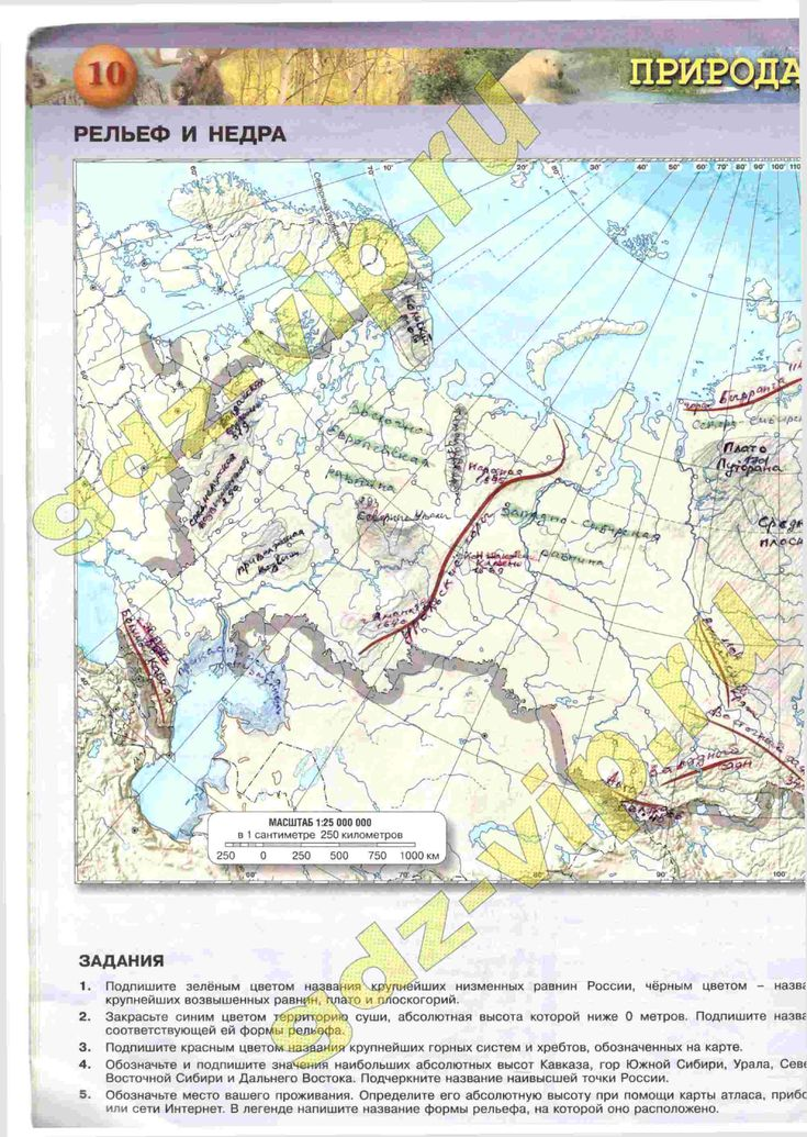 решебник на контурную карту по географии 8 класс просвещение