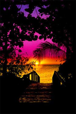 ✯ Gateway to Paradise