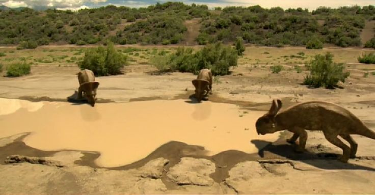 Protoceratops drinking in the Pond by WillDynamo55.deviantart.com on @DeviantArt