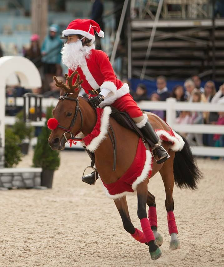 :)) Getting in the Holiday spirit!  The Devon Horse Show