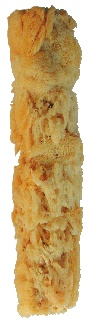 Paint and Design Store - Natural Sea Sponge Roller 6, $12.00 (http://www.paintanddesignstore.com/natural-sea-sponge-roller-6/)