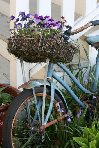 @Fallon Dez Thought you would like this idea! Old bike with a basket as a planter.