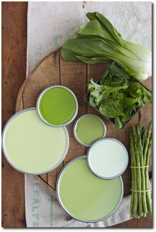 gromia_schema_colore_naturale_verde