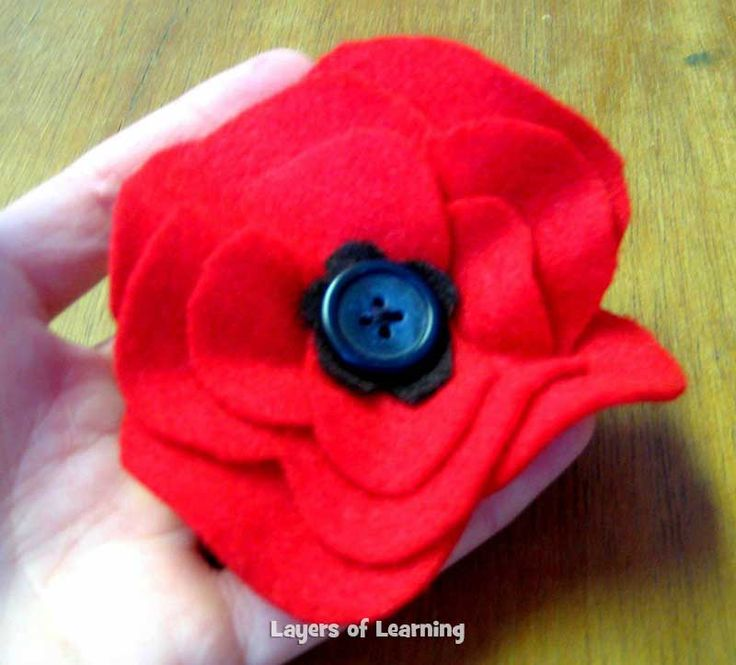 Make this Veterans Day poppy craft. It's also a great Remembrance Day craft, of course. Read the poem by John McCrae.
