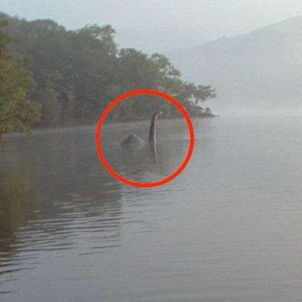Suposto monstro do lago Ness é fotografado por britânica