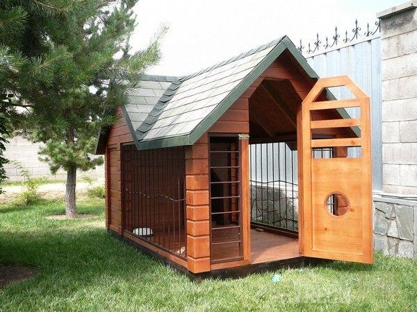 2 в 1: будка и вольер для собаки