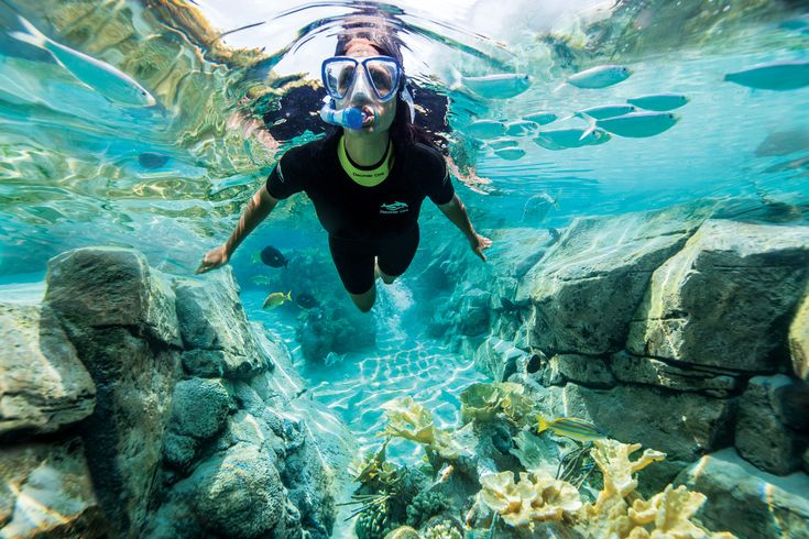 Snorkel through The Grand Reef, a vast underwater world teeming with thousands of colourful fish and graceful rays.