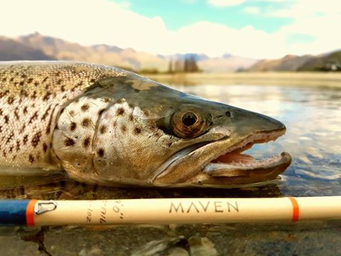 Angelo, The Game Chef, fishing in Wanaka, New Zealand, with Maven.