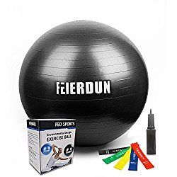 Exercise Ball - Anti Burst Tested yoga ball Supports 2200lbs,Includes Exercise Resistance Loop Bands & Hand Pump for Home, Balance, Gym, Core Strength, Yoga, Fitness, Pilates $15.99-$23.99