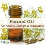 Fennel Oil Remedy for Anxiety, Cramps and Indigestion