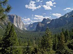Parque Nacional de Yosemite, una ruta para descubrirlo gracias a Guisante Verde