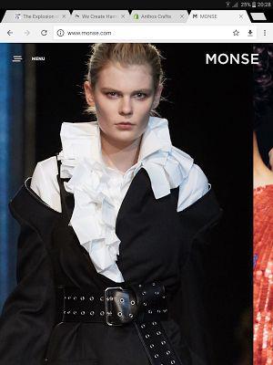 ΕΝΔΥΘΙ: Monse