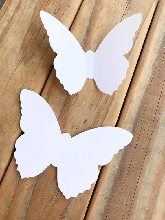 Pin On Butterfly Template