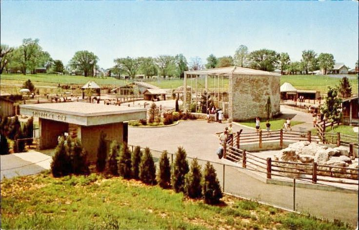 about Louisville Zoo on Pinterest  Louisville kentucky, Kentucky ...