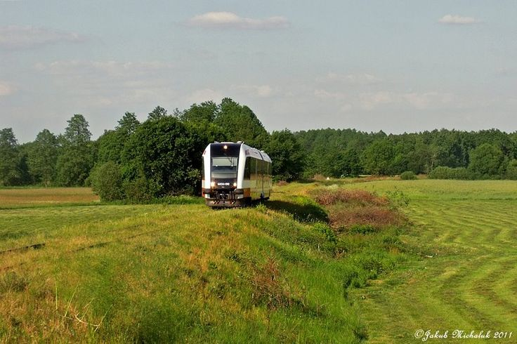 Potuły Wągrowiec - Rogoźno SA134 fot. Jakub Michaluk
