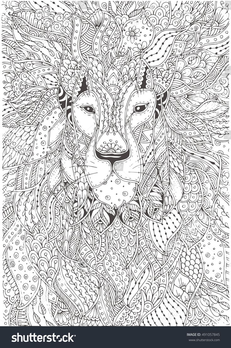 Hand-drawn Lion with ethnic floral  pattern. Coloring page - zendala, design for meditation, relaxation for adults coloring, vector illustration, isolated on a white background. Zendoodles.