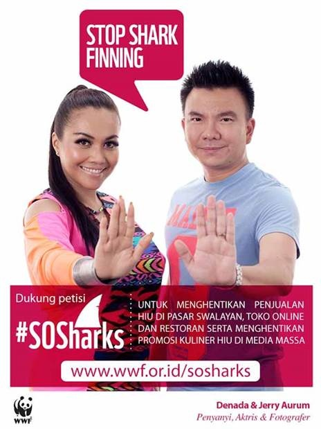 """Stop Shark Finning"" - Denada & Jerry Aurum"