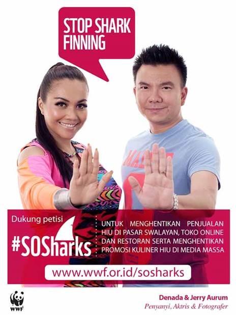 """Stop Shark Finning"" - Denada & Jerry Aurum"