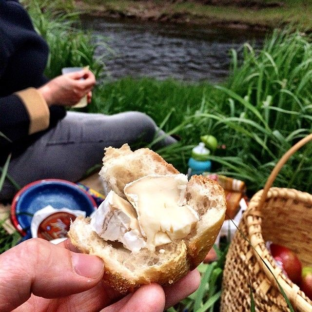 Bread and cheese riverside picnic. #CDNcheese #simplepleasures #albertsleapbrie #fiddleheading