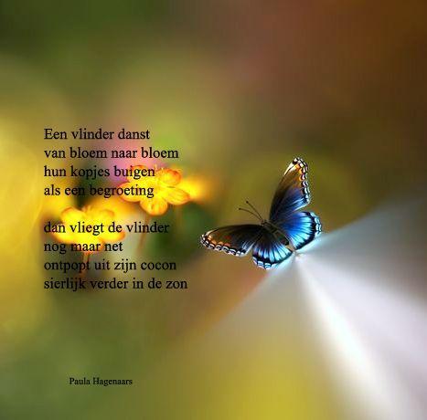 Beroemd Sterkte Overlijden Vlinder - ARCHIDEV @UD58