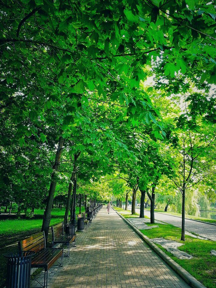хозяйкам известно, парки в реже картинки великолепное, благородное