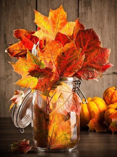 come-utilizzare-foglie-secche-decorare-casa-cura-orto-giardino