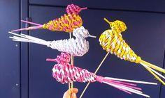 Vtáčatká :-)