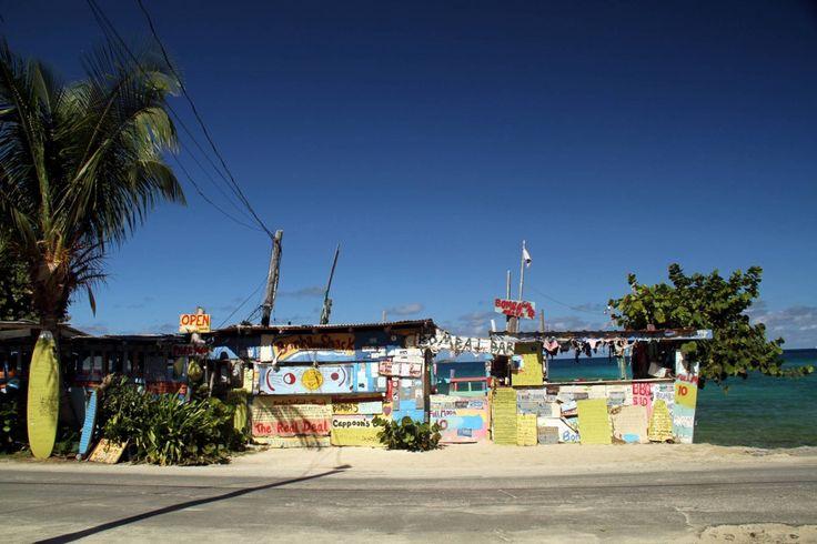 Ilha do Caribe tem cogumelo alucinógeno legalizado como atração