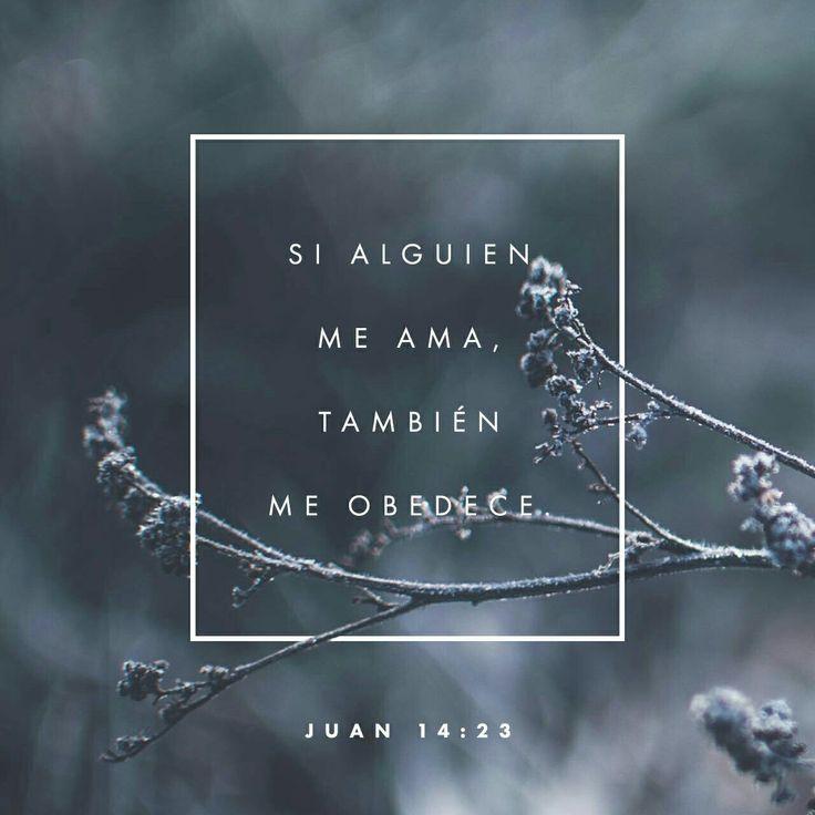 Jesús contestó: —Todos los que me aman harán lo que yo diga. Mi Padre los amará, y vendremos para vivir con cada uno de ellos. Juan 14:23