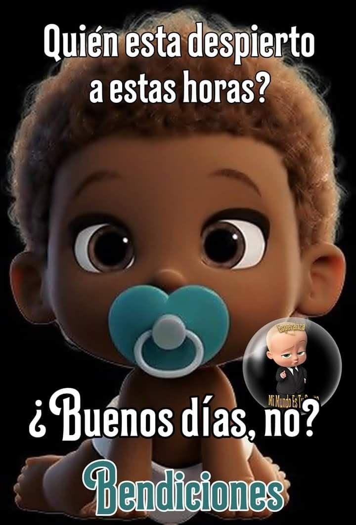 Pin De Rebeca Tamayo En Buenos Dias Buenas Noches Memes De Buenos Dias Buenos Dias Buenas Tardes Buenos Dias