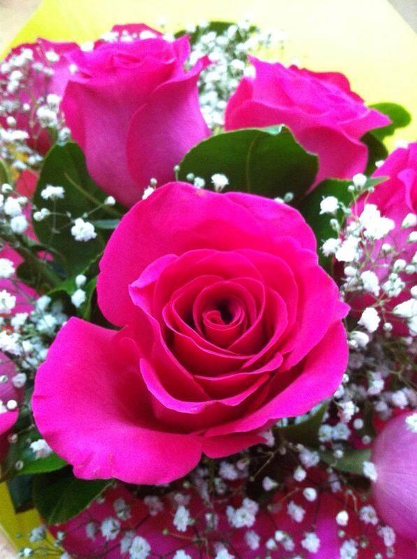 Jarrón de rosas fucsias #rosas