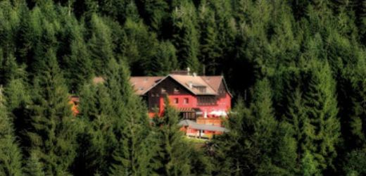 Les Jardins de Sophie. Situés entre le village de Xonrupt-Longemer et celui du Valtin, à 8 km de Gérardmer, les Jardins de Sophie occupent un domaine de 9 hectares en plein cœur de la forêt. Blotti dans son écrin, le Domaine de la Moineaudière a été entièrement reconstruit pour le plaisir des sens. On vient se retirer dans la nature pour se faire du bien, se déconnecter, se ressourcer dans la forêt de sapins...  En savoir plus sur http://www.loisirs.fr/actualite/Les-Jardins-de-Sophie.html