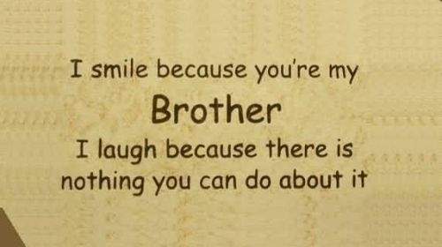 Brother Quotes and Sibling Quotes                                                                                                                                                     More