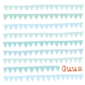 hip geboortekaartje Guus   vlaggetjes patroon http://www.snoesjes.com