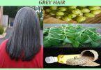 ayurvedic treatment for grey hair