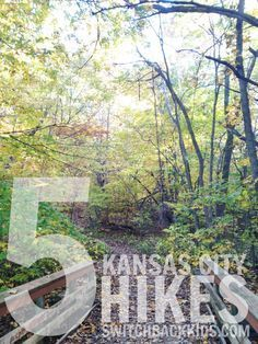 If you're in Kansas City and looking for a way to get outside, check out these hikes!