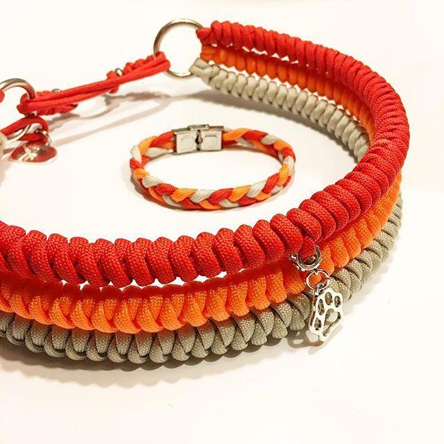 Halsband mit passendem Armband für den lieben Buddy @buddy_the_dog_2015 :-) Vielen Dank fürs Testen und das tolle Feedback <3 www.flechtladen.de info@flechtladen.de #halsband #hundehalsband #sommer #gutelaune #rot #orange #grau #dog #doglove #dogcollar #paracord #paracordhalsband #paracordarmband #armband #barcelet #loveit #handmade #flechtladen