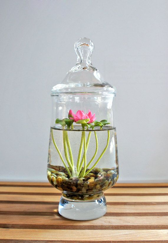 """Mini Lotus Pink Water Lily (clay) Terrarium in Recycled Glass A tiny 3″ bright pink Lotus (water lily) with little lilypads, each piece hand sculpted of the finest Japanese clay, encased in a 7.5″ tall (with lid) and 3"""" round recycled glass terrarium. The lotus is 'floating' atop faux water (gel-like resin) and growing from a bed of dark & swampy polished stones. This would be a lovely little desktop water garden!"""