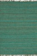 2' x 3' $50 rugs direct