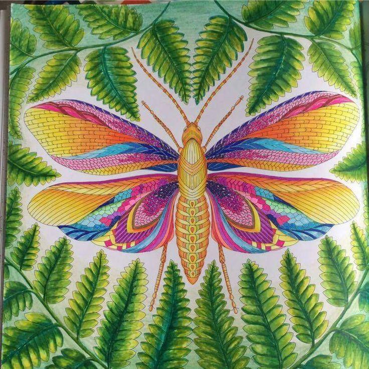 Millie Marottas Tropical Wonderland