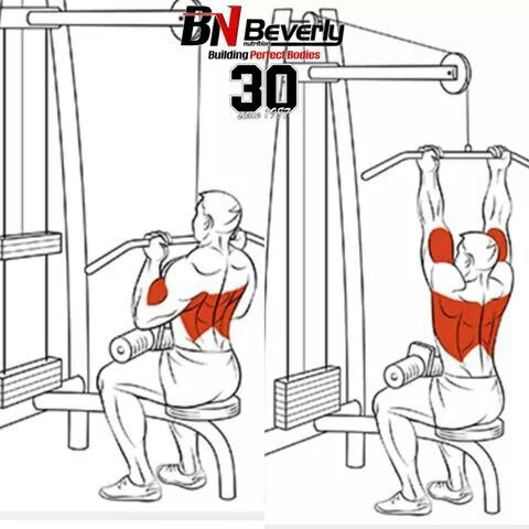 25+ best ideas about Back Workouts on Pinterest | Back ...