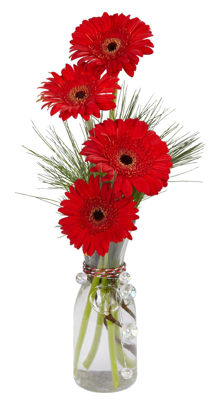 Perfect hostess gift..Gerbera Daisies in a Decanter Vase accented with OASIS Diamond Wire for holiday sparkle.