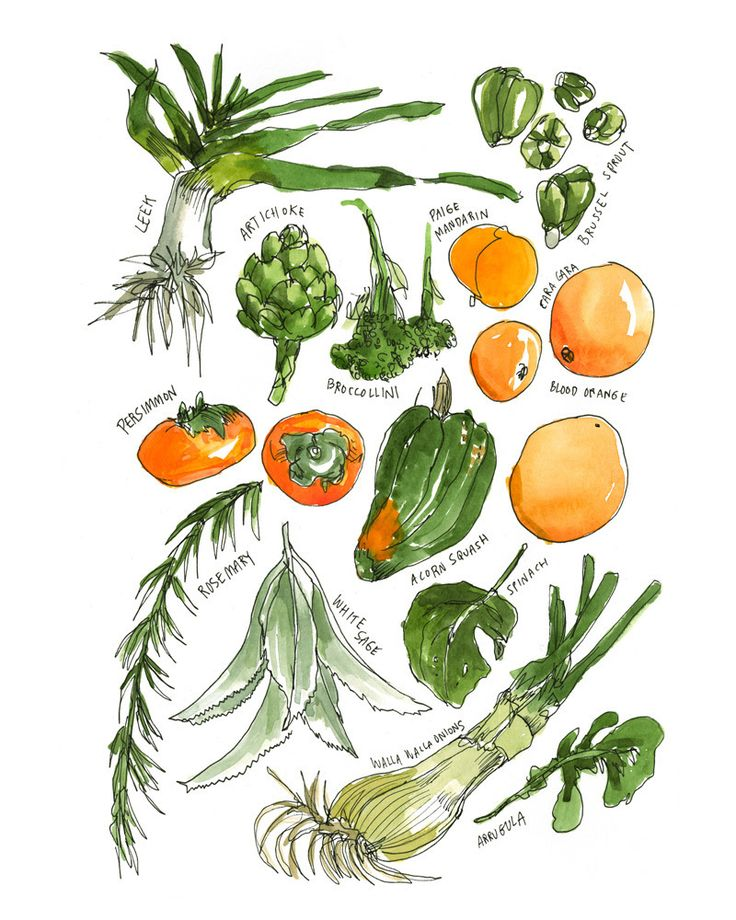 Vegetables (from the series Meanwhile, Farmers' Market Farmers), by Wendy MacNaughton | 20x200Food Illustration, Green Veggies, Marketing Farmers, Vegetables, Farmers Marketing, Wendymacnaughton, Food Art, Kitchens Prints, Wendy Macnaughton