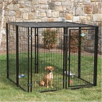Here are the top 5 best outdoor dog kennels of 2016  http://bestdogcratesandbeds.com/product-reviews/best-outdoor-dog-kennel/