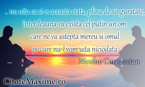 """"""".. nu uita ca si-n aceasta viata, plina de singuratate, întotdeauna va exista cel putin un om care ne va astepta mereu si omul pe care nu-l vom uita niciodata""""Nicolae Cornescian  #CitatImagine de Nicolae Cornescian  Iti place acest #citat? ♥Like♥ si ♥Share♥ cu prietenii tai.  #CitateImagini: #Viata #Inspirationale #Singuratate #AutorRoman #NicolaeCornescian #romania #quotes  Vezi mai multe #citate pe http://citatemaxime.ro/"""
