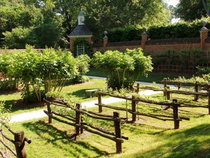 love this fence trellis idea